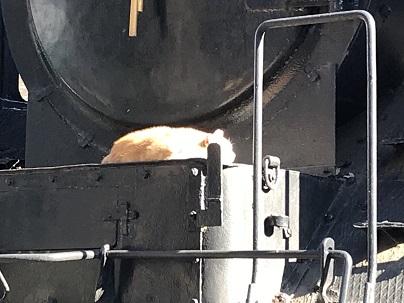 上野の機関車2.JPG